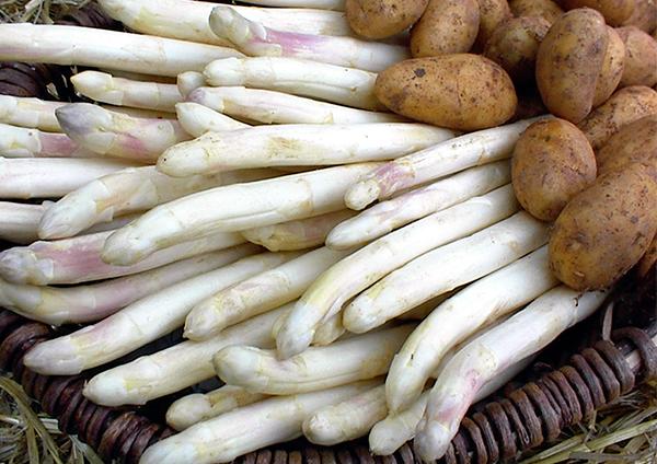 asperges en aardappelen